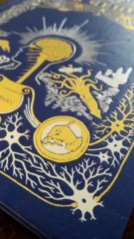 Detail. Matteo Farinella/Hana Ros, Das Gehirn, Antje Kunstmann Verlag 2018