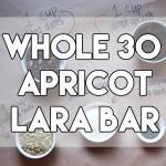 Whole 30 Apricot Lara Bar // stephanieorefice.net
