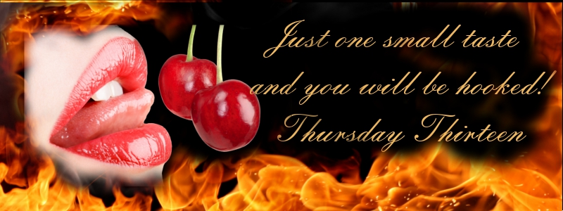 #ThursdayThirteen With Author @dochappycamper And #CoverReveal #eroticromance #LGBT