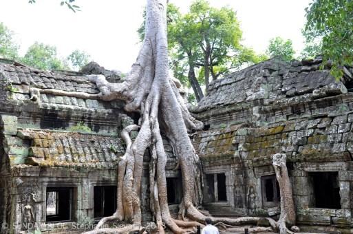 06 Angkor Wata (46)