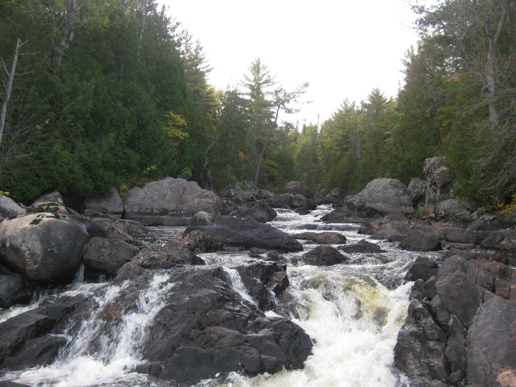 Snake Rapids
