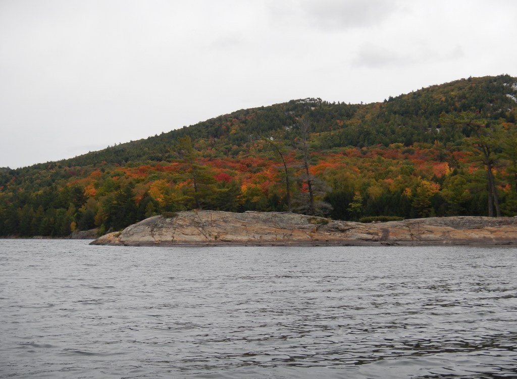 The south shore of Muriel Lake