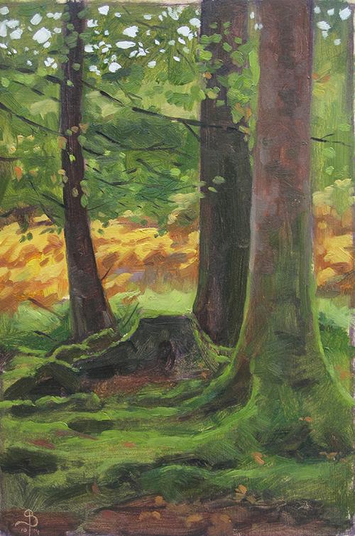 treestudy4