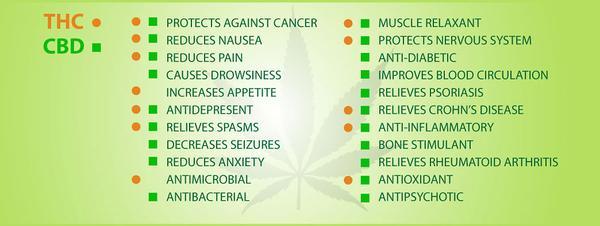 Legalize Cannabis Hemp