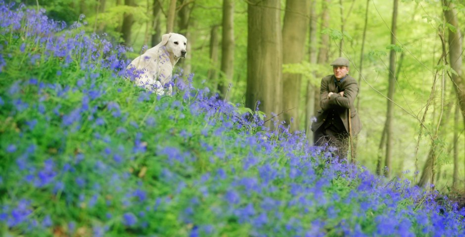 Gamekeeper and his dogs