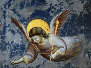 giotto_angel