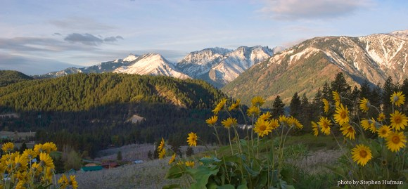 Blooming orchards and Balsamroot in the foothills of the Cascades