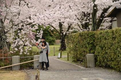 Near Kyoto's Nijo Castle