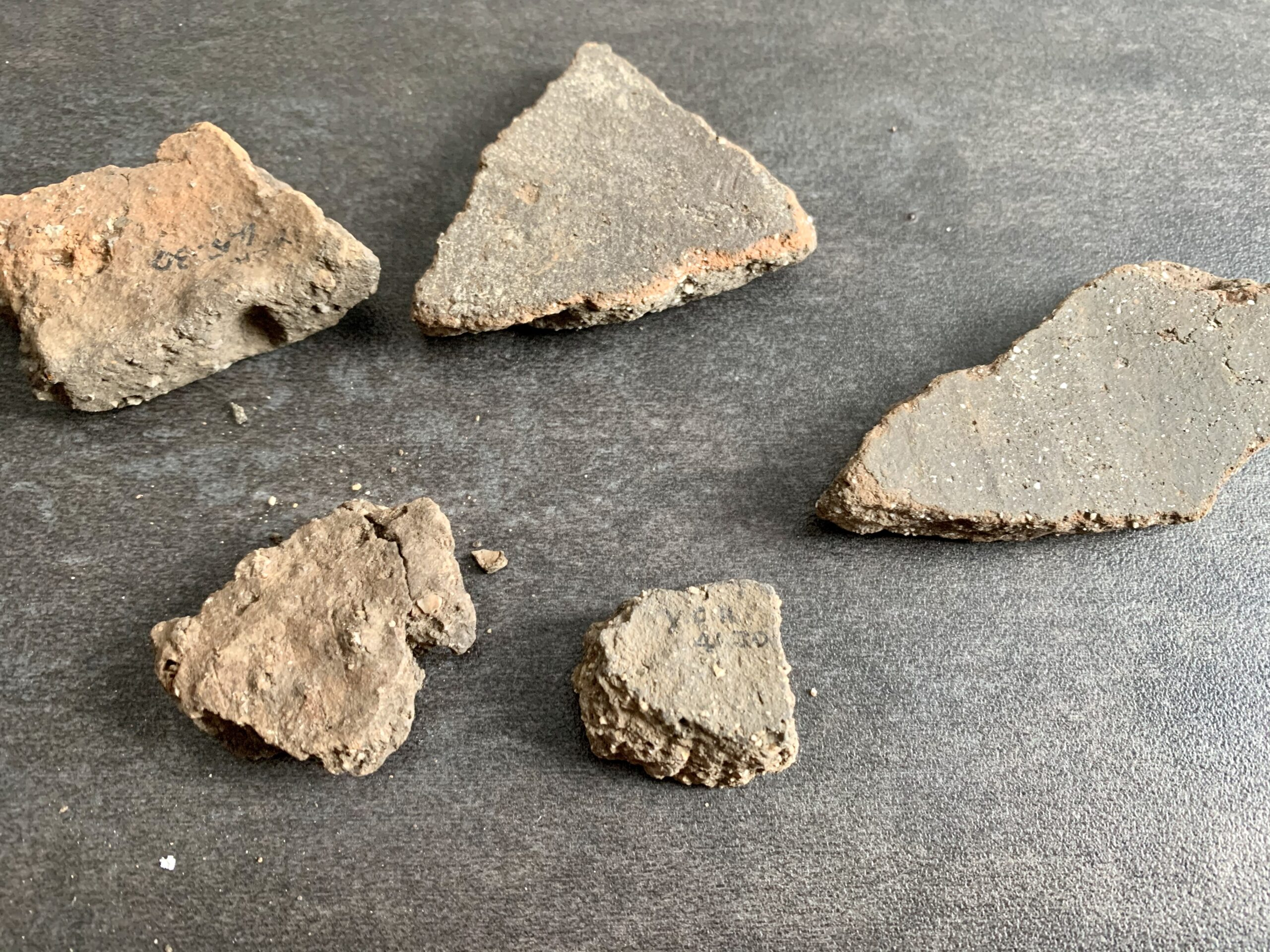 N005 - Neolithic Pottery Sherds (British Find)