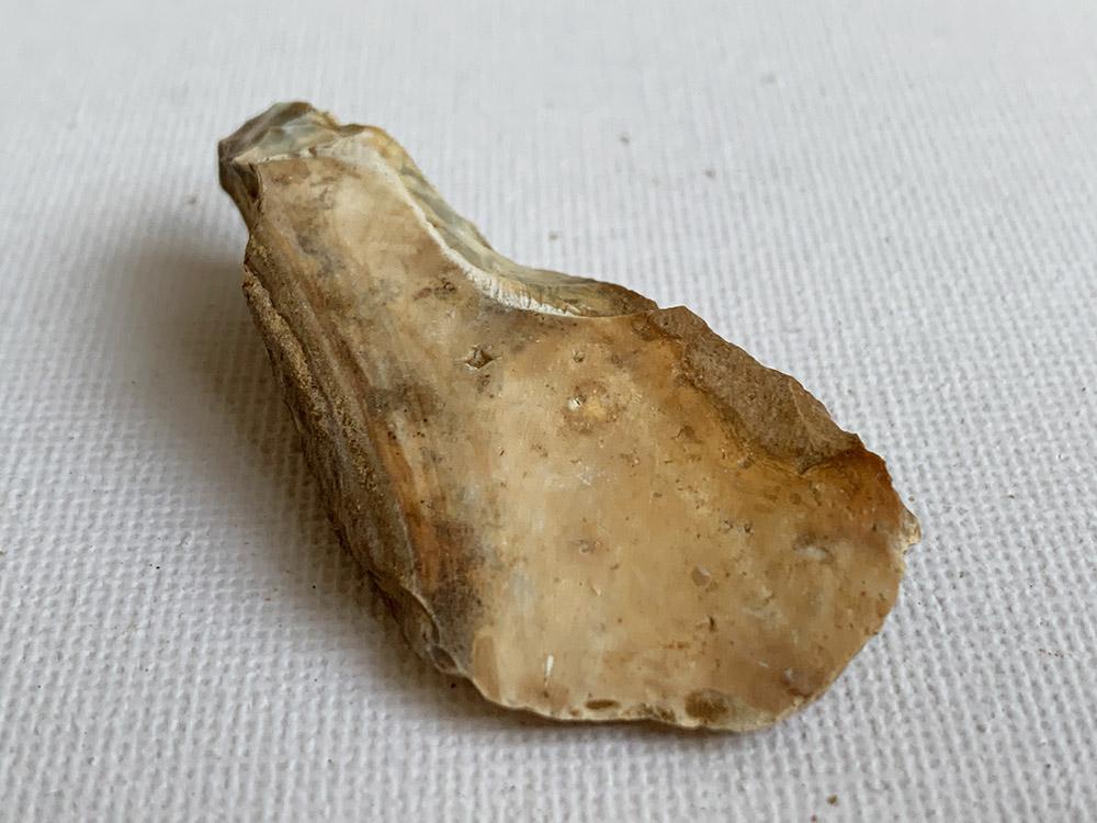 Mesolithic Spoon Scraper