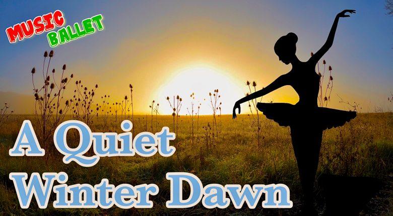 A Quiet Winter Dawn   Beautiful Frosty Winter Sunrise   Elegant Winter Ballet