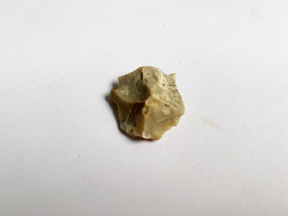 Small Neolithic Point / Blade
