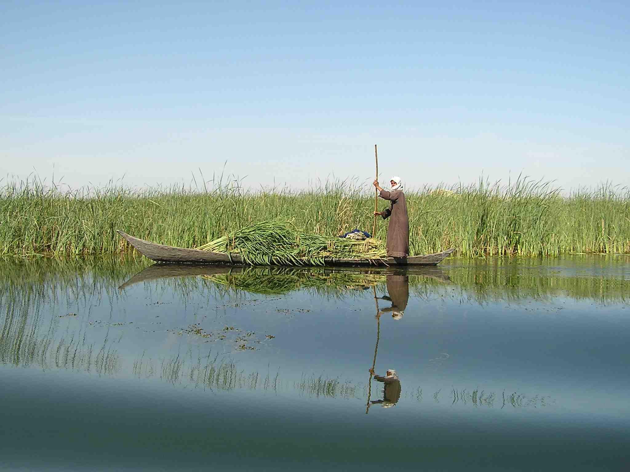 mesopotamian_marshes-nature_-iraq-sml