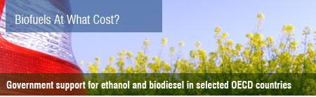 gsi-biofuel.jpg
