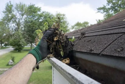 Cleaning gutters filled with leaves and sticks.