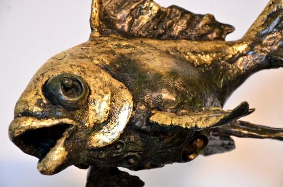 Gold,Goldfish,Bronze Goldfish