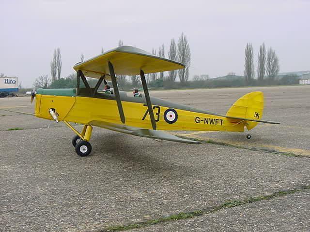 D82 tigermoth