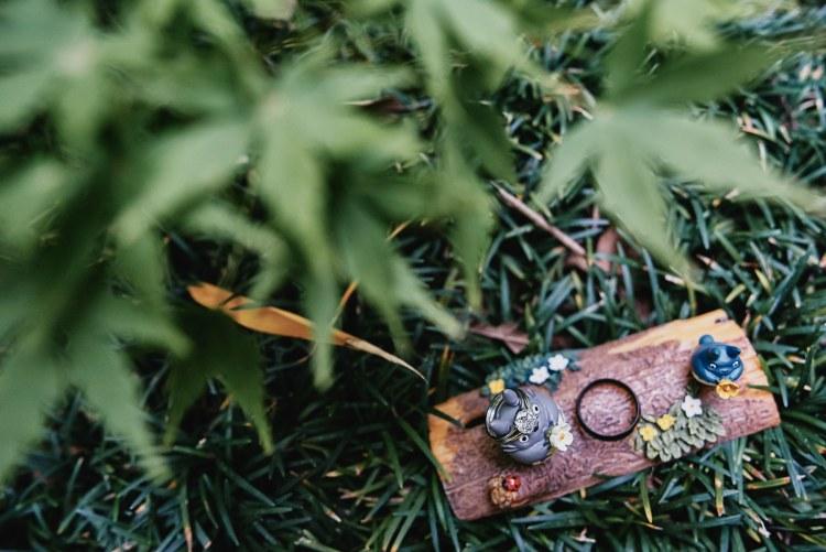 totoro wedding rings
