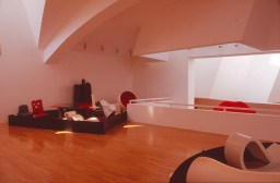 Vitra Design Museum by Frank Gehry 55_Stephen Varady Photo ©