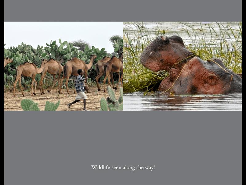 Ethiopia Mission Trip 2014_Page_60