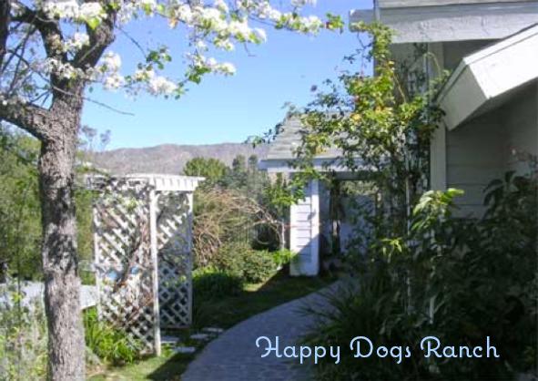 happydogsranch
