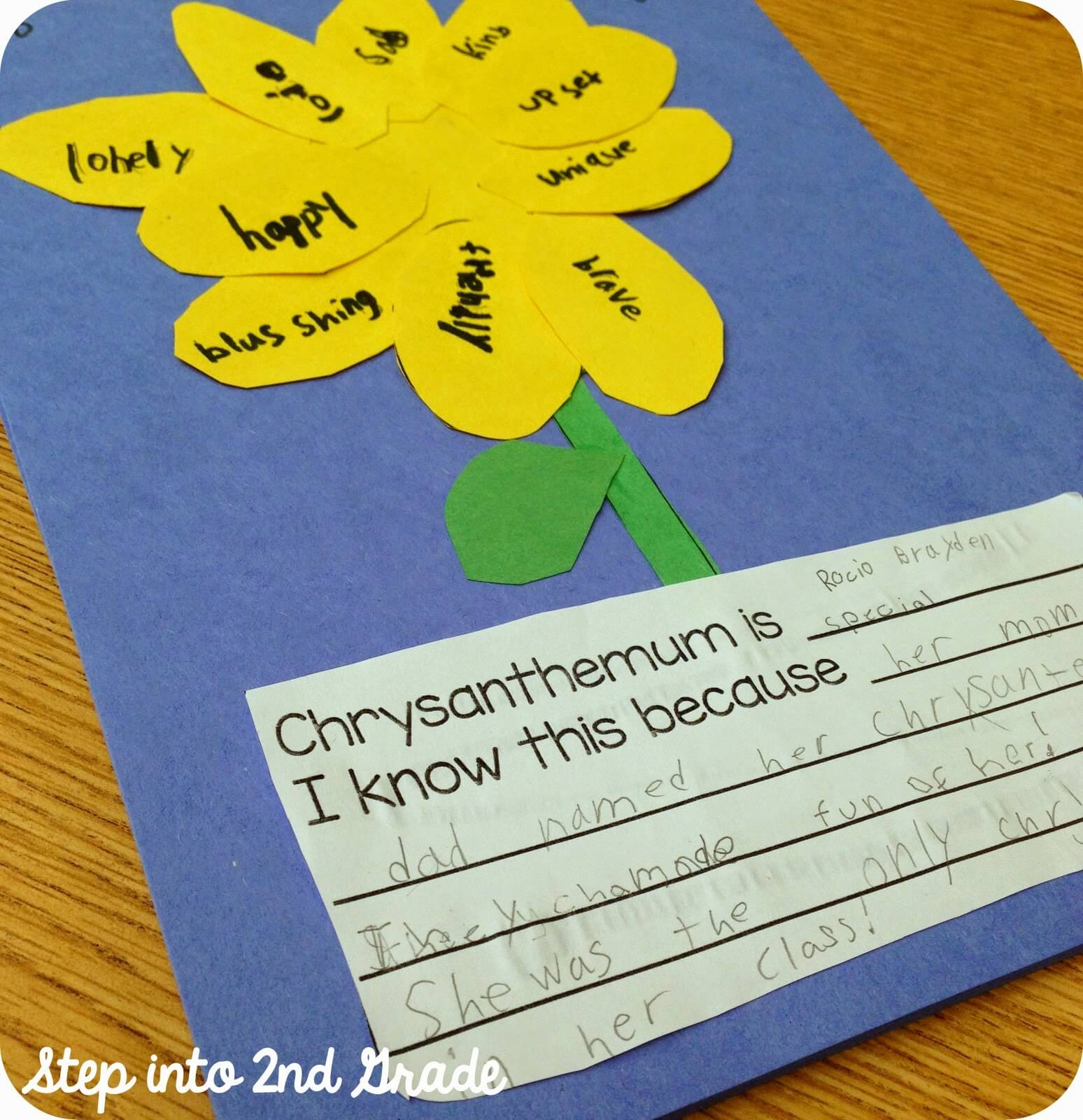 Chrysanthemum Chrysanthemum Chrysanthemum