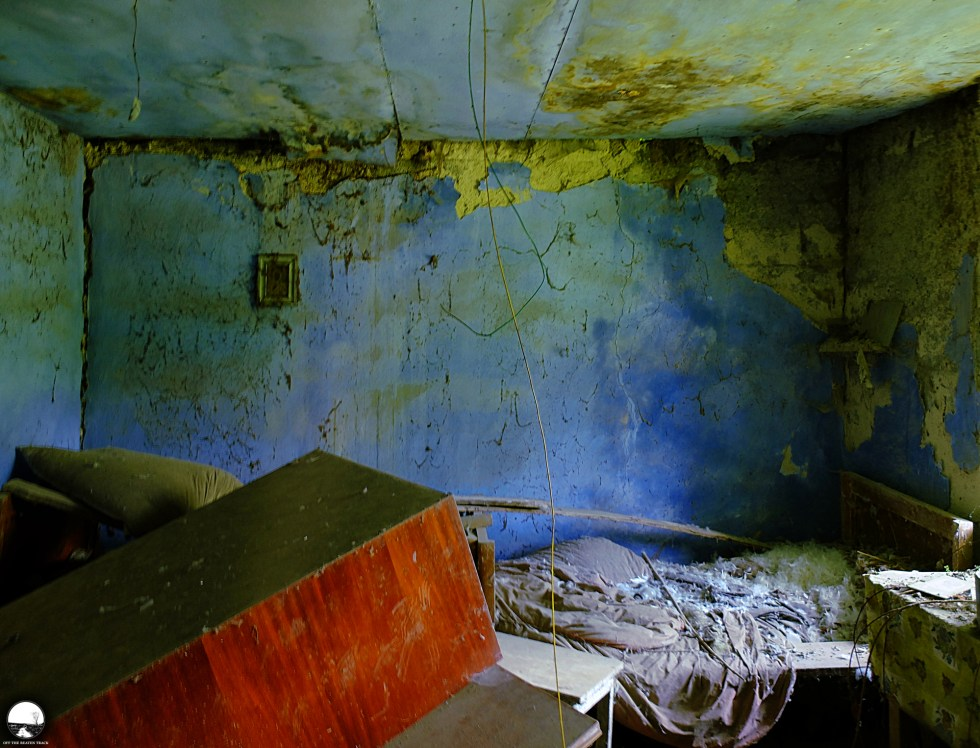 The Abandoned House 'What the Vines Are Hiding' (Poland) - 12.jpg
