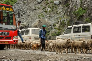 on the road … from Leh to Srinagar