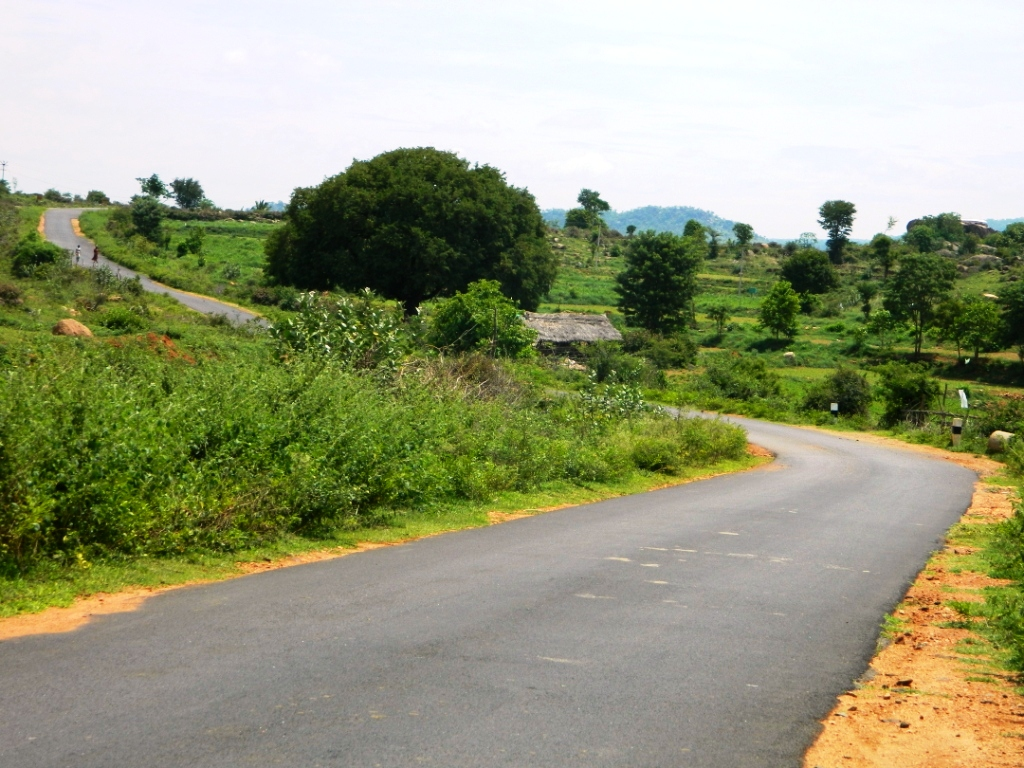 Beautiful Lonely Road to Hogenakkal