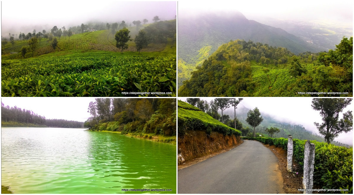 Ooty and Coonoor