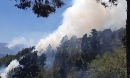 Más de 40 incendios forestales en Quetzaltenango, en lo que va de 2019