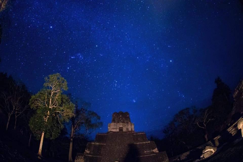 El Halcón Pecho Naranja está en peligro de extinción. Aplican medidas en Tikal