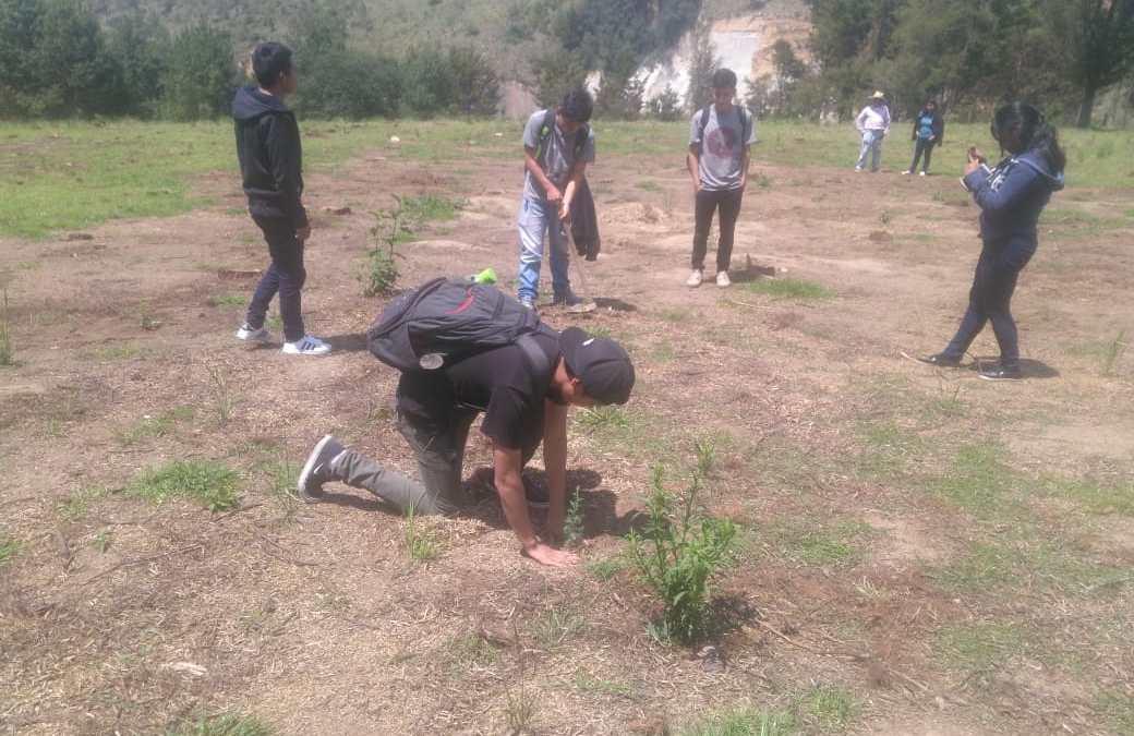 Quetzaltenango: Jóvenes participan en movimiento de reforestación