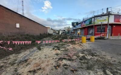 Tala de árboles continúa en Xela