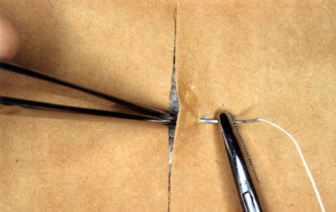 Suturing exercise