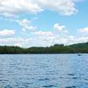 Topics in Natural Science: Loons and Limnology