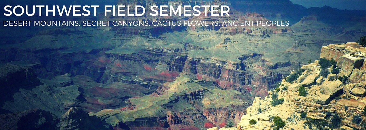 Southwest Field Semester
