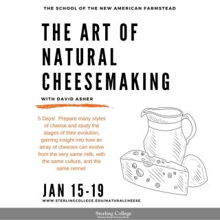 The Art of Natural Cheese - Instagram flyer