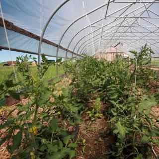 Sterling College Sustainable Agriculture