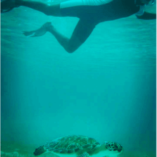 Swimming in San Salvador Bahamas