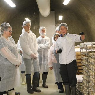 Cheesemakers in Cheese Cave