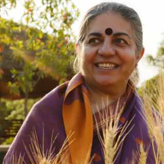 Photo of Vandana Shiva standing in golden light in a wheat field