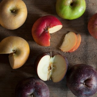 Among the 80 varieties of organic apples that Michael Phillips grows are (clockwise from upper left) Golden Russet, Erwin Bauer, Rhode Island Greening, Cox's Orange Pippin, and Black Oxford.