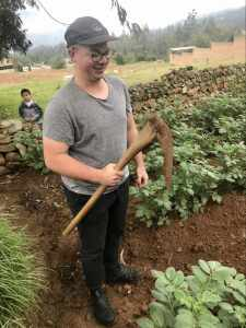 Student Robb Milks tries out a Peruvian hoe as we help hill potatoes in a field near Huaraz.