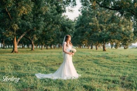 Taylor_bridals(int)-29