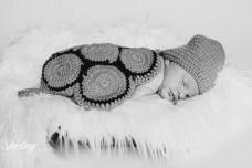 Kaden_newborn(int)-40
