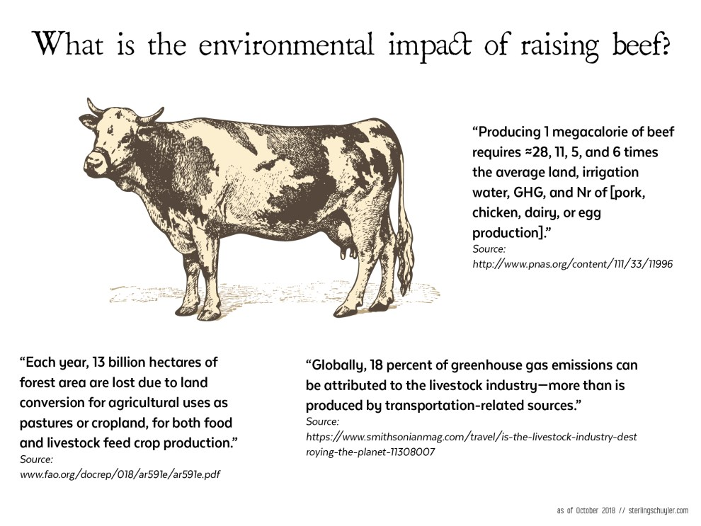 What is the environmental impact of raising beef?