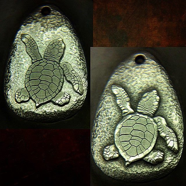 baby_sea_turtle_II_3
