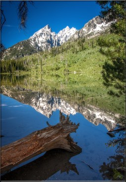 Grand Tetons Reflections 1