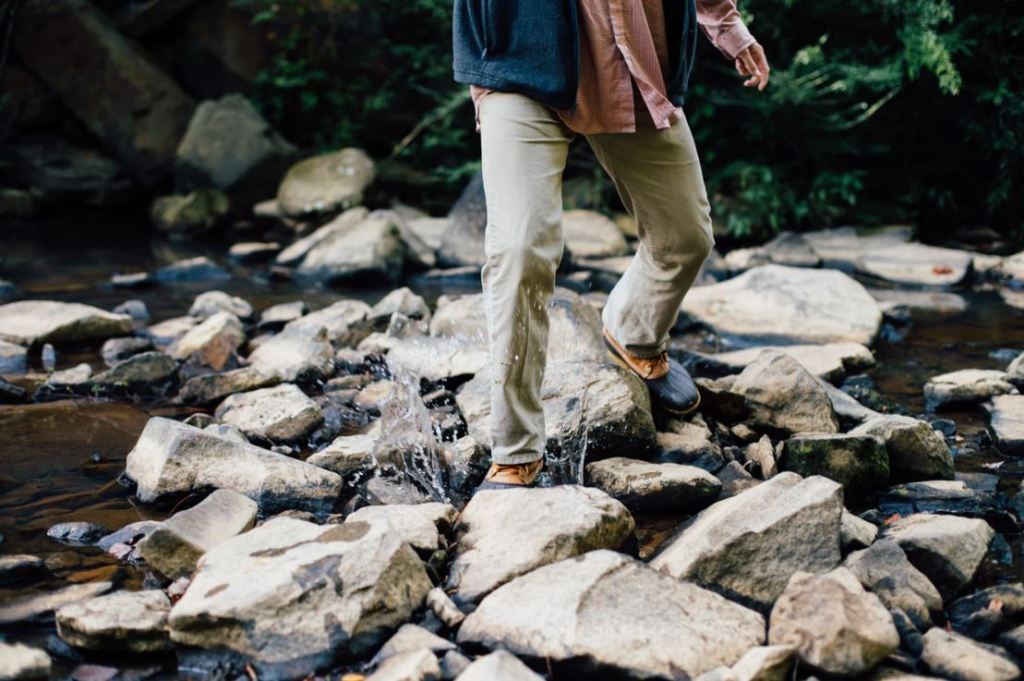 5 Things I Learned Reading: Pilgrim At Tinker Creek